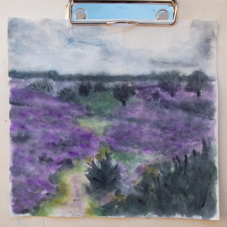 Drenthe heath