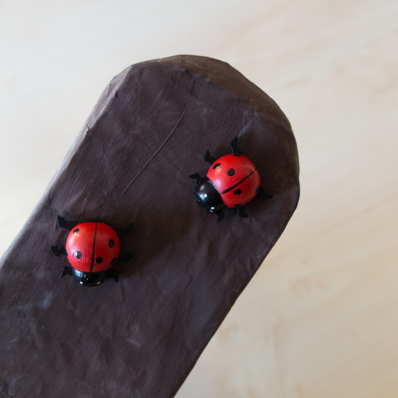 Ladybugs on an arm