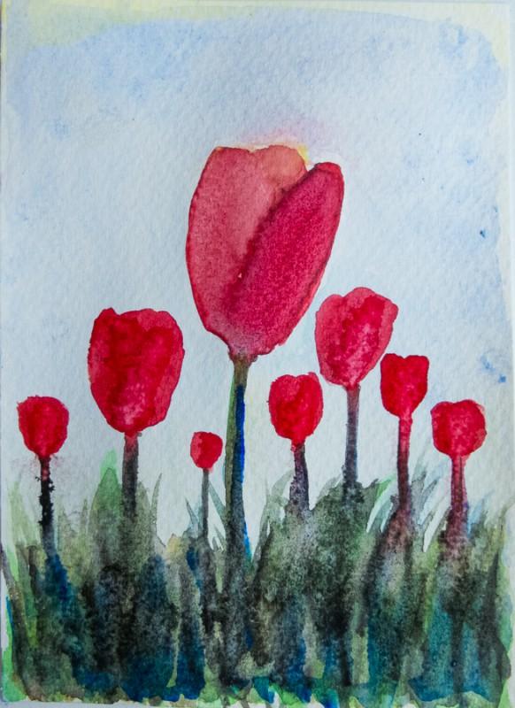 Tulip field (10 x 15 cm postcard)