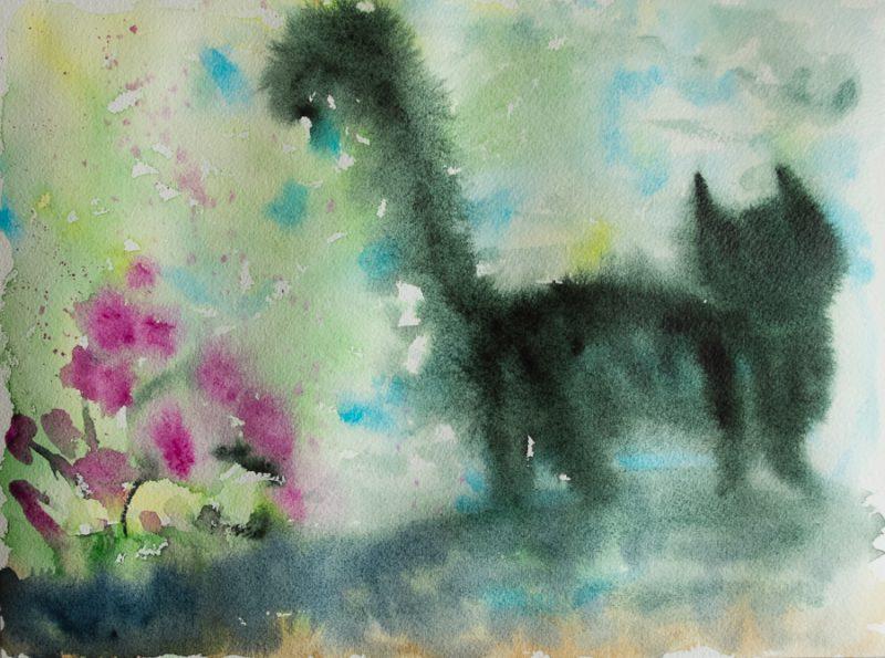 Blurry cat
