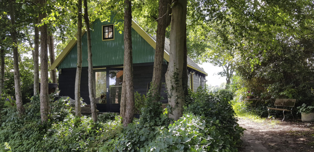 The holiday house from the back. It has green wooden paneling.