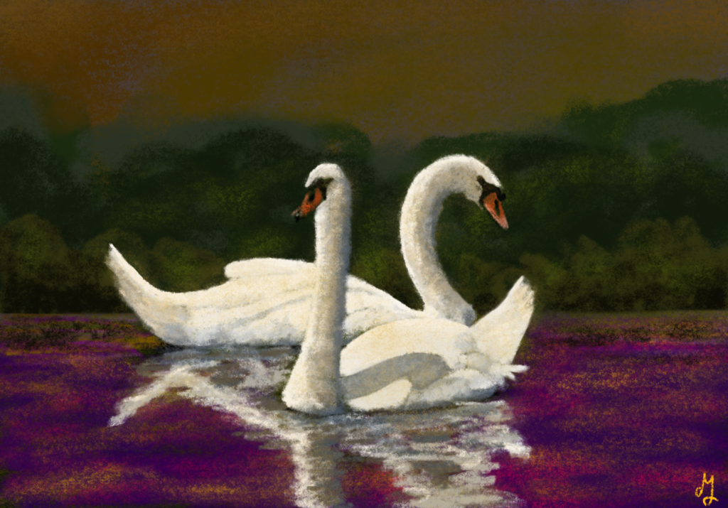 A digital painting of two swans, swimming in a purple pond. There is some greenery behind them and the sky is rusty orange.