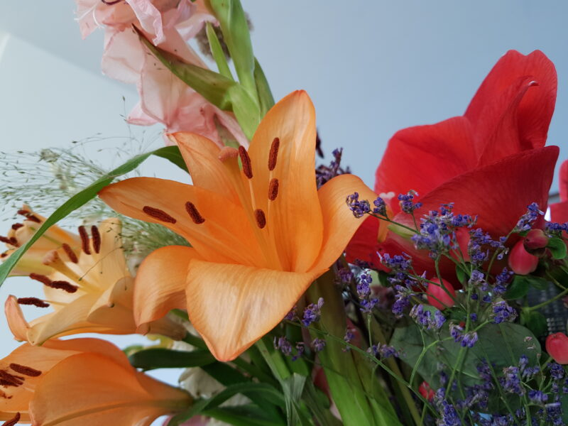 An orange lily in a bouquet