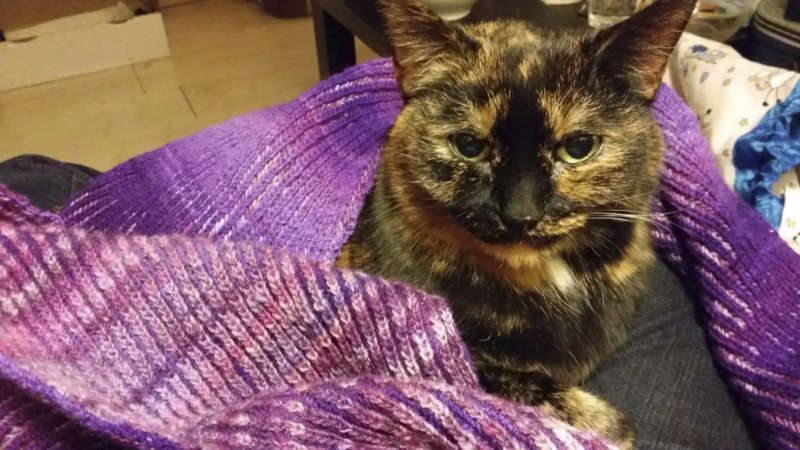 Freya, wearing a pink scarf