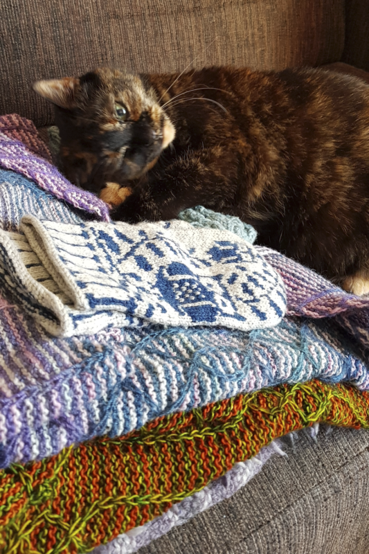 Freya, lying on a pile of knitted shawls, looking content.